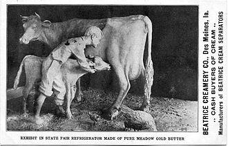 Iowa State Fair - John K. Daniels' butter cow at the 1911 Iowa State Fair.