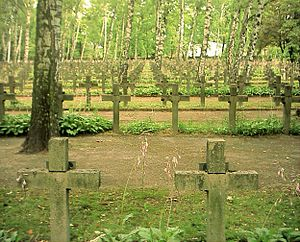 Battle of Warsaw (1920) - Graves of Polish soldiers who fell in the Battle of Warsaw, Powązki Military Cemetery, Warsaw