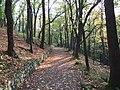 Praha, Košíře, Cibulka, podzimní park.JPG