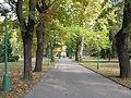 Praha, Královská zahrada, na podzim.JPG