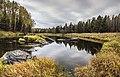 Prigorodnyy r-n, Sverdlovskaya oblast', Russia - panoramio (134).jpg