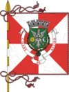 Flag of Aveiro