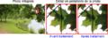 Réduction logicielle aberration chromatique.png