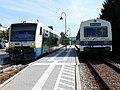 RS1 und NE81 Wieslauftalbahn.jpg