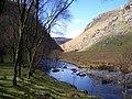 RSPB Nature reserve Gwenffrwd -Dinas - geograph.org.uk - 377228.jpg