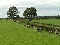 Race the Train runners - 2008-08-16.jpg