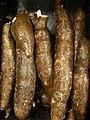 Racine de yucca (manioc).jpg