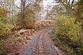 Rails through the woods - geograph.org.uk - 1560218.jpg