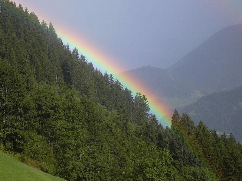 File:Rainbow Falera.jpg