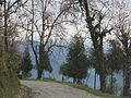 Ravangla, Sikkim by Masum Ibn Musa (82).JPG