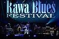 Rawa Blues Festival Janiva Magness 011.jpg