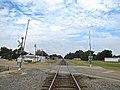 Rector-RR-tracks-ar.jpg