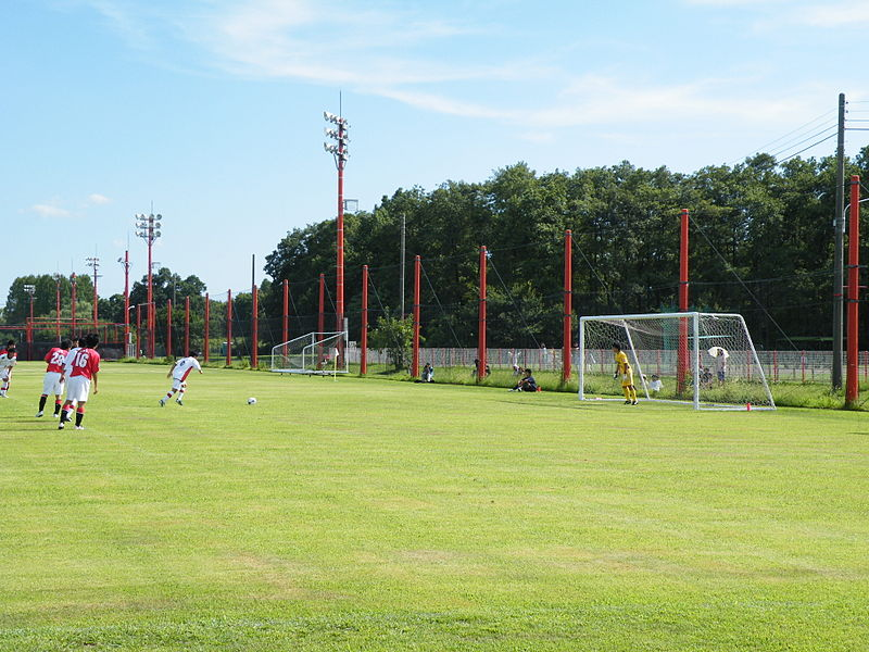 File:RedsLand Natural Pitch.JPG