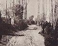 Regnault, Victor - Landschaft bei Sèvres (Zeno Fotografie).jpg