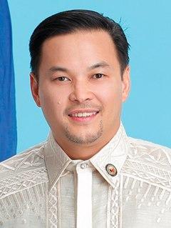 Mikee Romero Filipino businessman and politician