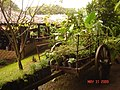 Restaurante Jardin De Celeste ( Ataco) - panoramio.jpg