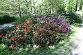 Rhododendrondalen Norrköping 2008-05-10 bild03.jpg