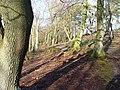 Ridden Corner - geograph.org.uk - 303099.jpg