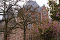 Rijksmuseum Amsterdam (7149647497).jpg