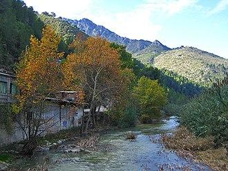 Serpis - The river near Vilallonga.