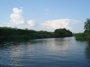 Sapozhkovsky District - Para River, Sapozhkovsky District