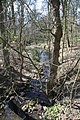 River Rase - geograph.org.uk - 1260914.jpg