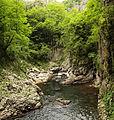 River Reka.jpg