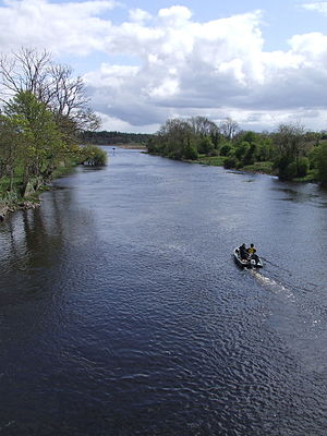 Drumsna - Image: River Shannon from Drumsna bridge