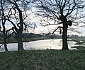 River Tyne at Tyninghame - geograph.org.uk - 144906.jpg