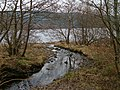 River flowing into Loch Awe - geograph.org.uk - 102392.jpg