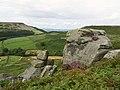 Rock outcrop, Bilsdale - geograph.org.uk - 528793.jpg