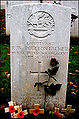 Ronald Poulton-Palmer grave.jpg