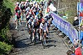 Ronde van Vlaanderen 2015 - Oude Kwaremont (16867172150).jpg