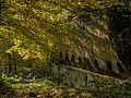 Ruine-Rotenhan-266119.jpg