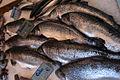 Salmon for sale in a Parisian fish market.jpg