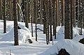 Salpa-line Finland - panoramio (1).jpg