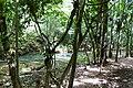 Samaná Province, Dominican Republic - panoramio (117).jpg