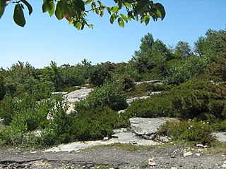 Sams Point Preserve
