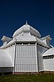 San Francisco Conservatory of Flowers-34.jpg