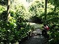 San Juan Botanical Garden - DSC07090.JPG