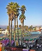 SantaCruz BeachBoardwalk Carousel palmsDSCN9371