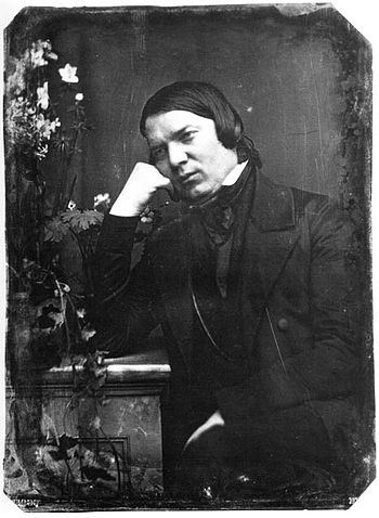 English: Robert Schumann in an 1850 daguerreotype.