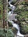 Schwarzenbachtal Kreuth 4.jpg