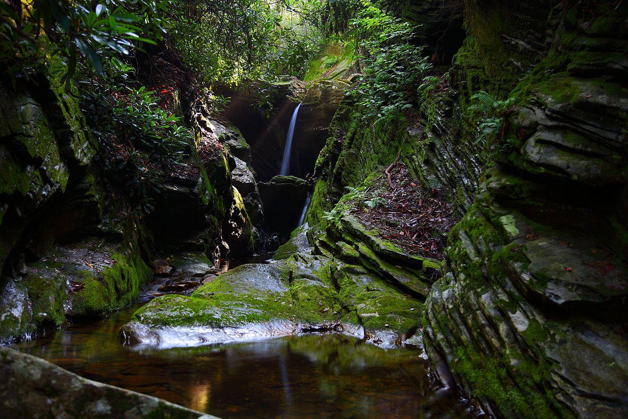 La Caceria Salvaje [Ainara Spenser] 1280px-Secret-waterfalls-heavenly-sunbeam_-_Virginia_-_ForestWander