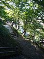 Seisho park04s2816.jpg