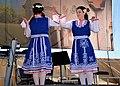 Serb Fest DSC 1156 pp (31025054562).jpg