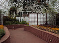 Serpentine Room, Phipps Conservatory, 2015-10-13, 01.jpg