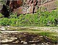 Shadows on Water, Zion NP, Riverside Walk 5-1-14b (14287990108).jpg