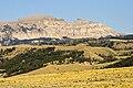 Sheep Mountain Jackson WY1.jpg