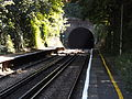 Shepherds Well railway station, EG11, August 2013.JPG